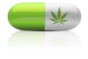 Drogen und Cannabis im Straßenverkehr