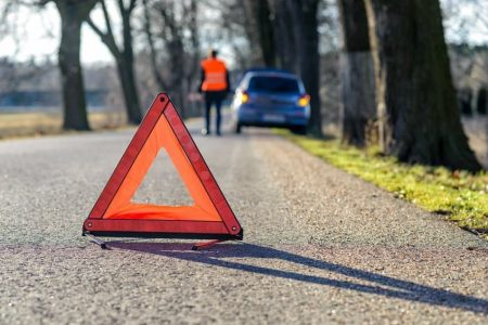 Nach einem Wildunfall die Unfallstelle sichern.