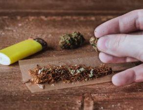 Cannabis und Drogen